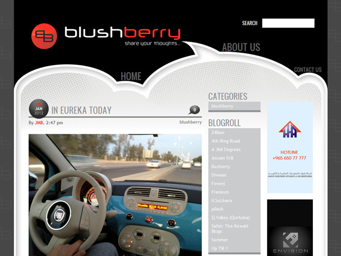 BLUSHBERRY, Blog